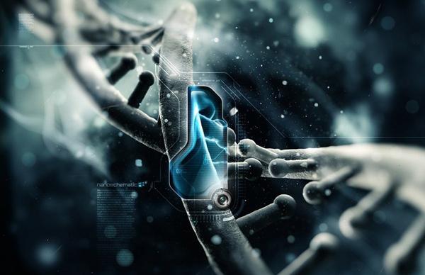 software-genes